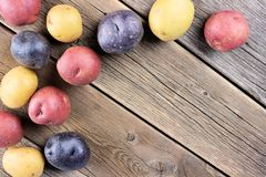 Corner border of colorful little potatoes over rustic old wood Stock Photos