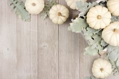 Corner border of white pumpkins and silver leaves over gray wood Stock Photography