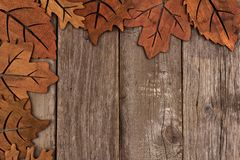 Corner border of wooden autumn leaf decor Stock Images