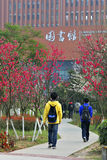 A corner of the campus. The students The students walked up the path to the library。Beside the road,the flowers bloom in spring stock image