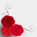 Corner with carnations. royalty free illustration
