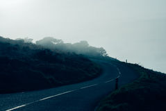 Corner of a country road in the mist Stock Photography