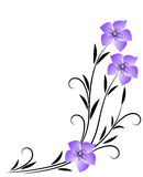 Corner floral ornament Royalty Free Stock Images