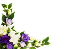 Corner flowers arrangement. On white background. Flat lay. Top view stock photography