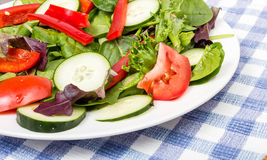 Corner of Fresh Green Salad Royalty Free Stock Photography