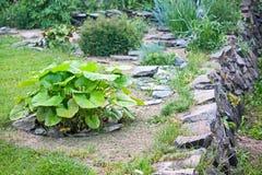 Corner of the garden Royalty Free Stock Photos