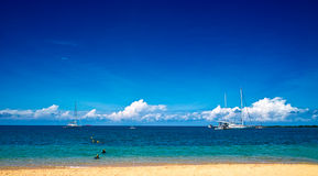 Corner of the Great Barrier Reef. Such beautiful beach of the Great Barrier Reef stock images