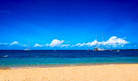 Corner of the Great Barrier Reef. Such beautiful beach of the Great Barrier Reef royalty free stock photo
