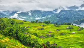 Corner of the hill villages of Ha Giang province, Vietnam Stock Images