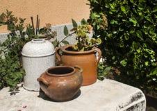 Corner of home garden Stock Image