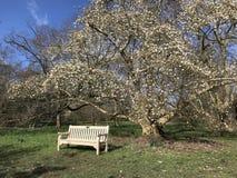 Corner of Kew gardens stock images