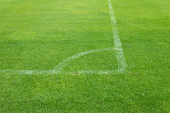 Corner kick of soccer on grass Stock Images