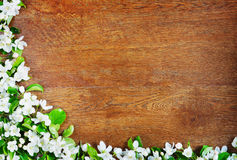 Corner made of apple flowers over wooden background Royalty Free Stock Photos