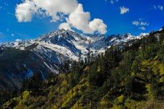 The Corner of Mount Gongga Stock Image