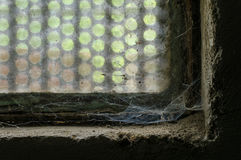 In the corner of an old window a spider`s web develops Stock Photos
