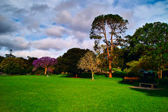 A corner of the Park. Nearly of Circular Quay Royalty Free Stock Photography