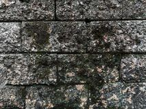 In Front of Rock Wall. Corner: a place or angle where two or more sides or edges meet. rock : the solid mineral material forming part of the surface of the earth stock photos
