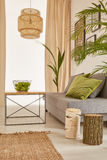 Corner of plants apartment Royalty Free Stock Photography