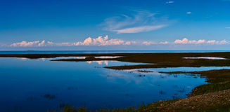 Qinghai lake Royalty Free Stock Photo