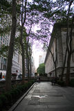 The corner space between New York Library and street Stock Photography