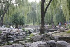 A corner of TAORAN garden in summer Peking Royalty Free Stock Photography