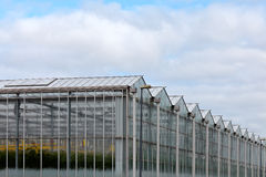 Corner view of a greenhouse Royalty Free Stock Images