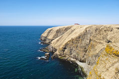 A Corner of the World. Cape St. Marys Newfoundland showing Coastal Cliffs, Horizon, Flying Seabirds and Distant Cliff Top Interpretation Center Royalty Free Stock Photography