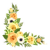 Corner with yellow roses. Vector illustration. Stock Images