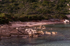 Corners of the island of the maddalena Royalty Free Stock Image