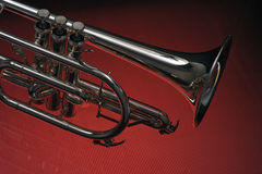 Cornet 02 Stock Photos