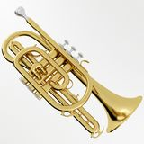 Cornet. 3d rendering of a Cornet Royalty Free Stock Photography