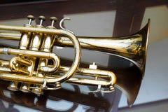 cornet Image stock