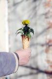 Cornet avec des fleurs Photos libres de droits