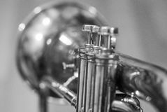 Cornet in black and white. Black and white picture showing cornet musical instrument Stock Photo