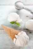 Cornet de crème glacée de noix de coco de plan rapproché image stock