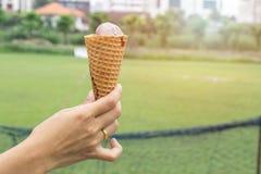 Cornet de crème glacée rempli de softserve tournoyé à disposition Photographie stock