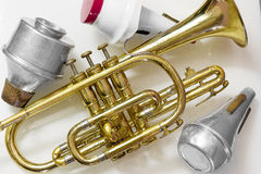 Cornet. The Cornet and mute on wooden background Stock Images