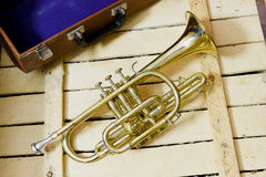 Cornet. The Cornet on wooden background Royalty Free Stock Images