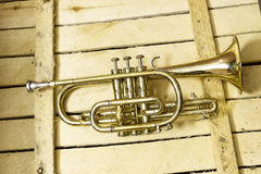 Cornet. The Cornet on wooden background Royalty Free Stock Photography