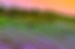 Cornfield και ουρανός Στοκ Φωτογραφία