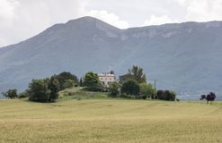 Cornfield και χαρακτηριστικό σπίτι της Προβηγκίας το καλοκαίρι με τα βουνά στο υπόβαθρο Στοκ Φωτογραφίες