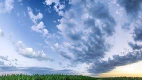 ζωηρόχρωμος ουρανός πέρα από cornfield Στοκ Φωτογραφίες