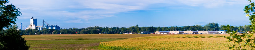 Free Cornfield In Central Colorado, USA Stock Images - 98653734