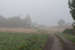Cornfield mist and rainy day Stock Photography