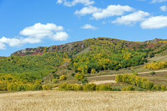 cornfield and mountain forest in the autumn Stock Photos