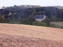 Cornfield nära nytt Etal, Northumberland, England Royaltyfria Foton