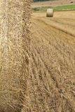 Cornfield scene with haybales Royalty Free Stock Photography