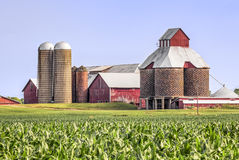 Cornfield, Silos, and Barns. A cornfield is backed by red barns with several interesting silos in rural Ohio, USA stock photography