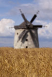 Cornfield with windmill Royalty Free Stock Photos