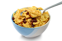 Cornflake with currant in a ceramic bowl. Isolated and clipping path On White Background Royalty Free Stock Photos
